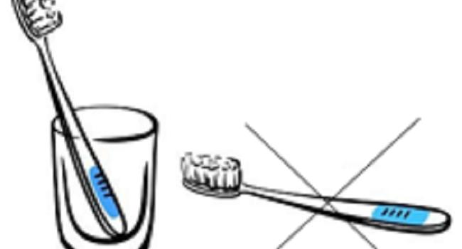 Όλη Η Αλήθεια Για Την Οδοντόβουρτσα Σας.